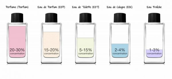 Men's cologne guided - Fragrance Concentration