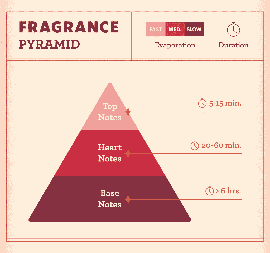 Fragrance Pyramid