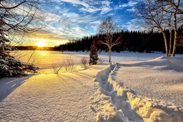winter season landscape